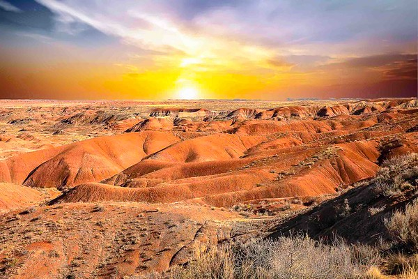 Painted Desert & The Petrified Forest
