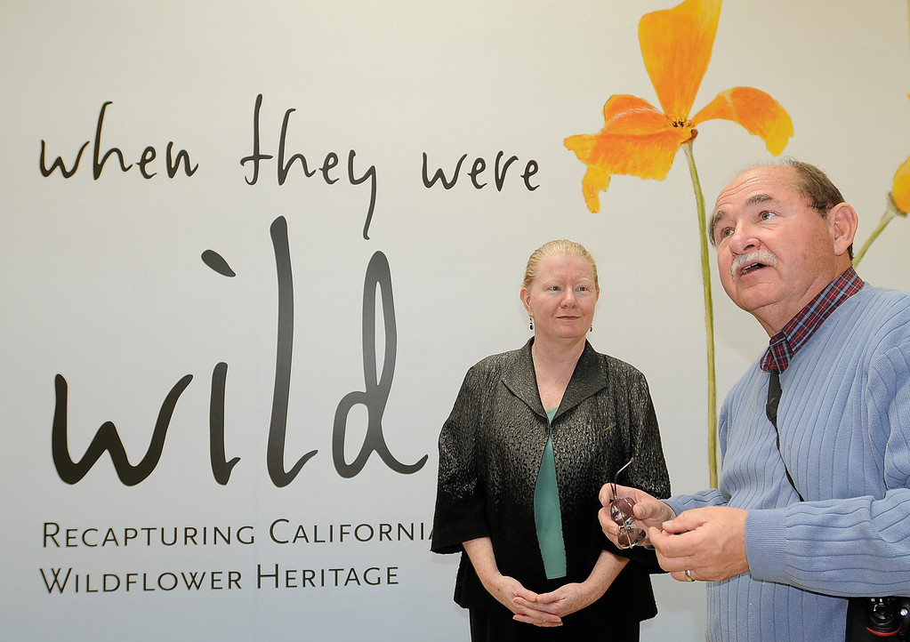 ". (l-r) Kitty Connoly, the exhibit curator and Jim Folsom, the Director of the Gardens stand in front of the exhibit. ""When they were wild,\"" is the Huntington Library\'s new Wildflower exhibition which kicks off a month of talks, workshops and wildflower sales. San Marino, CA 3/8/2013(John McCoy/Staff Photographer)"