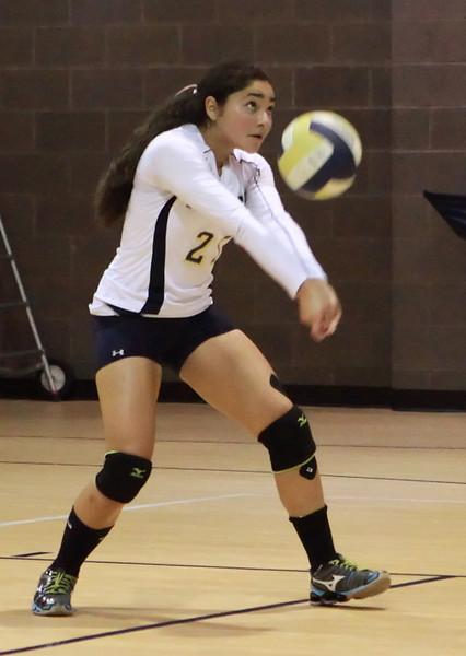 VCA-Volleyball-142.jpg