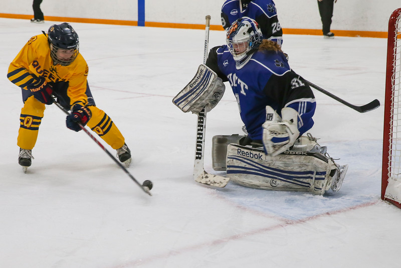 20150129 QWHockeyatUOIT 1112.JPG