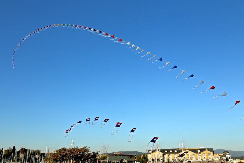 Kite Lines over the Bellweather IMG_1177.jpg