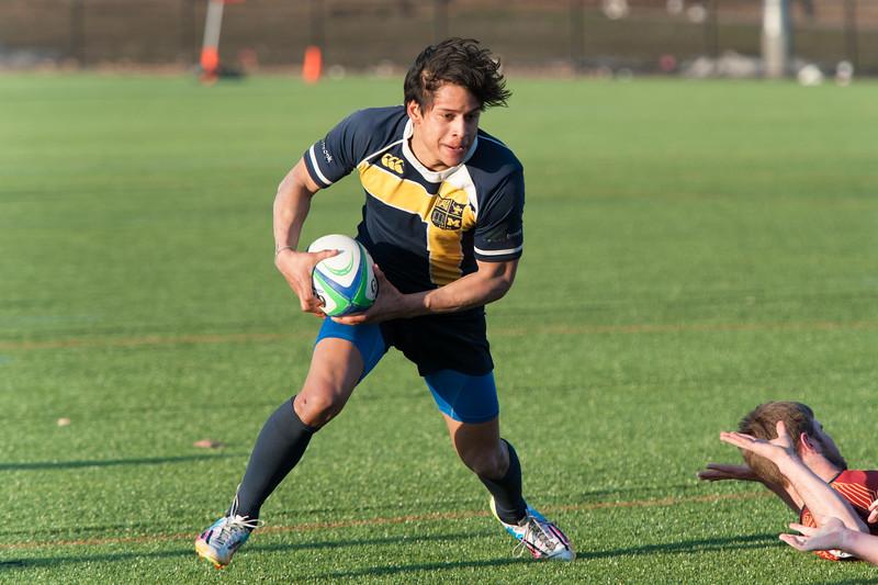 2015 Michigan Rugby vs. Calvin -410.jpg