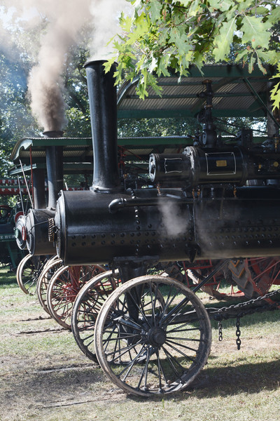 Steam Festival 2010
