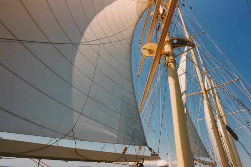 SF Sails Hor.jpeg