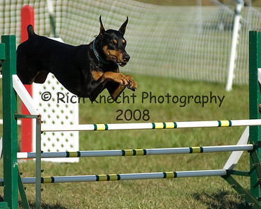 Dog Agility: Willingboro 10/15/06