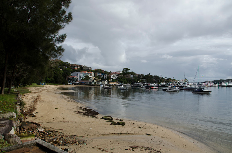 Their Rose Bay neighbourhood (6)  the bay itself (3)...