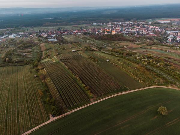 Vinarstvi Knezi hora :: vychod nad vinohrady 2021