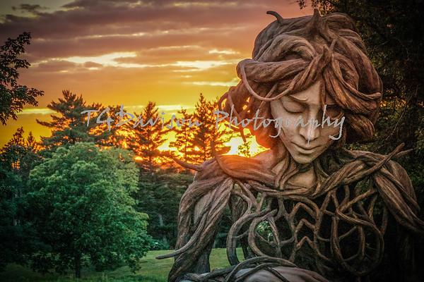 Morton Arboretum/Daniel Popper Sculpture 6/21/21