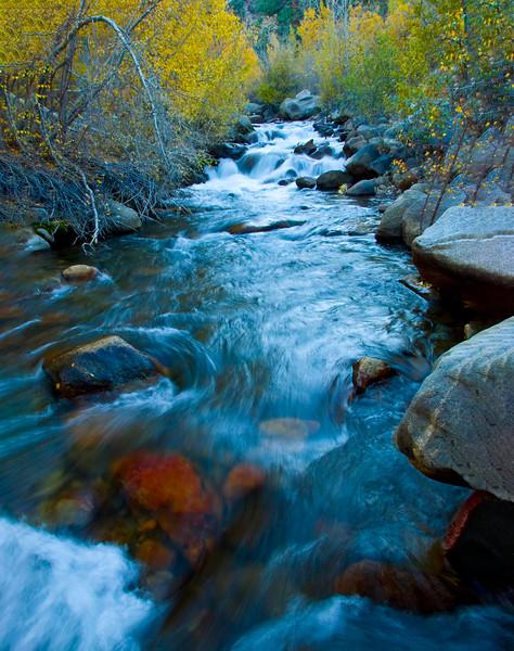 Bishop Creek-6.jpg