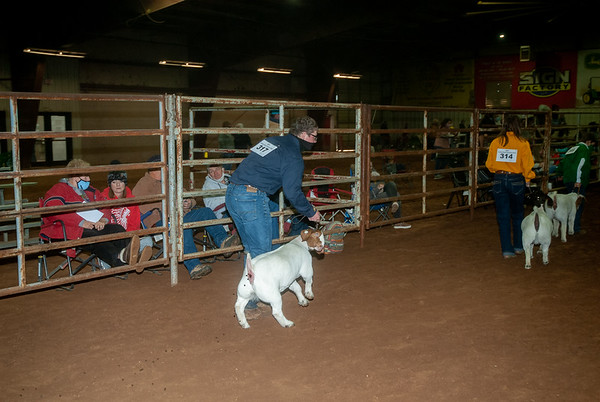 Central Area Goat Shows 2021