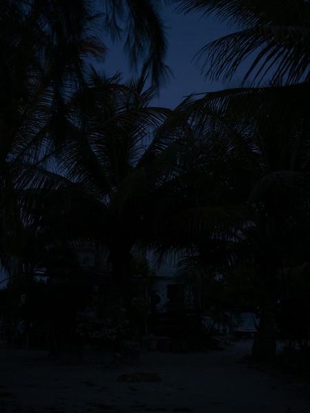Mahajaul Mex 2016-4120181.jpg