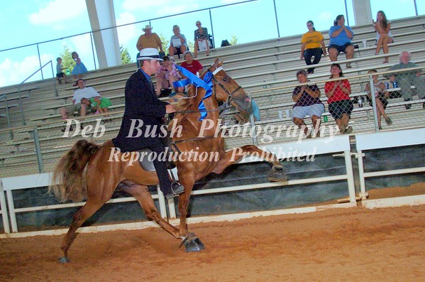 CLASS 10  TWO YR OLD RIDERS CUP