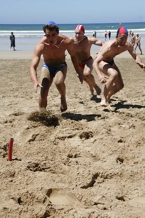 Beach Flags - Br 051211