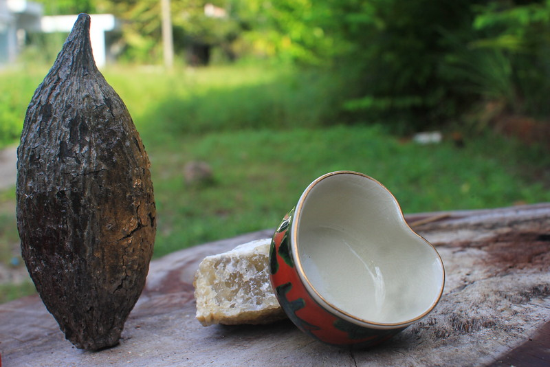 Cacao pod & heart-shaped plate