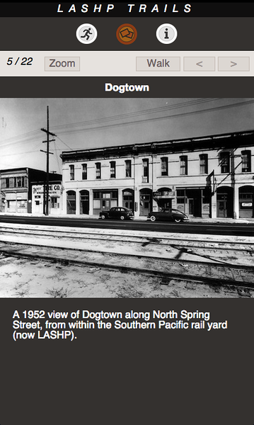 DOGTOWN 05.png