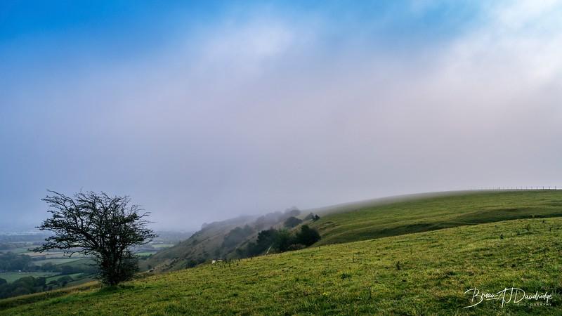 South Downs Mist-3655-Edit.jpg