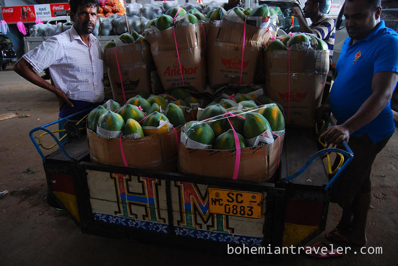 Papayas at Dambulla wholesale market in Sri Lanka.