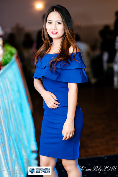 Specialised Solutions Xmas Party 2018 - Web (98 of 315)_final.jpg