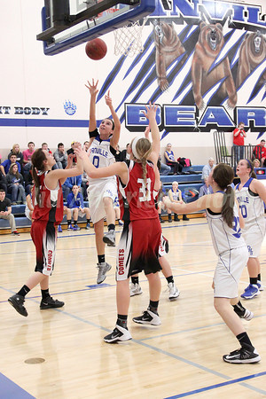 Girls Basketball, Cardinal vs Danville 11/26/2013