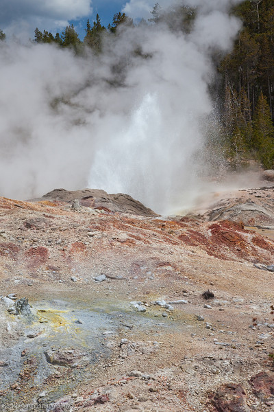 Yellowstone-41.jpg