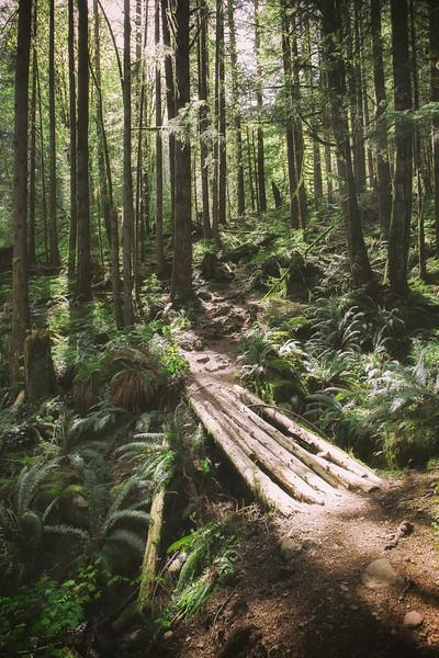 Evans Peak Trailhead