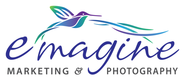 emagine_logo_options