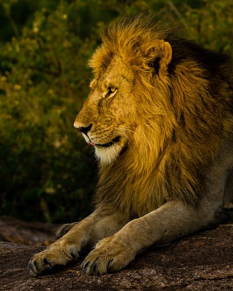 Africa-0949.jpg