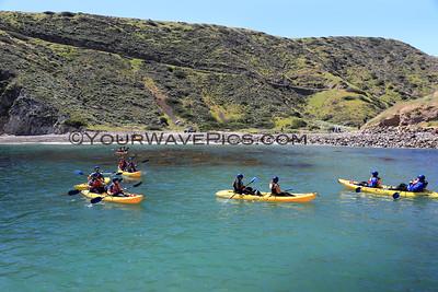 Santa Cruz Island - Scorpion Landing 4/17/19