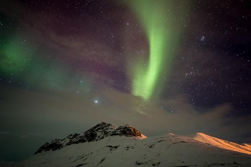 Arctic Wildlife and Landscapes Photo Workshop-4.jpg