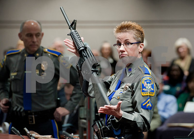 families-of-newtown-victims-sue-rifle-manufacturer