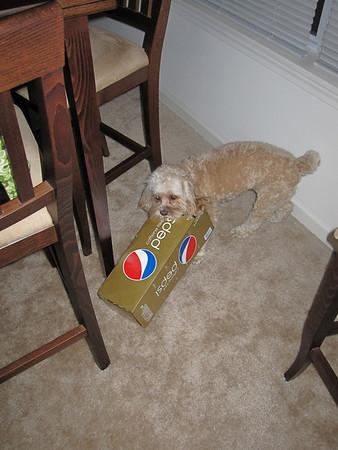Olive v. Pepsi box