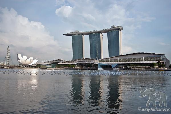 Marina Bay Sands Hotel & Marina