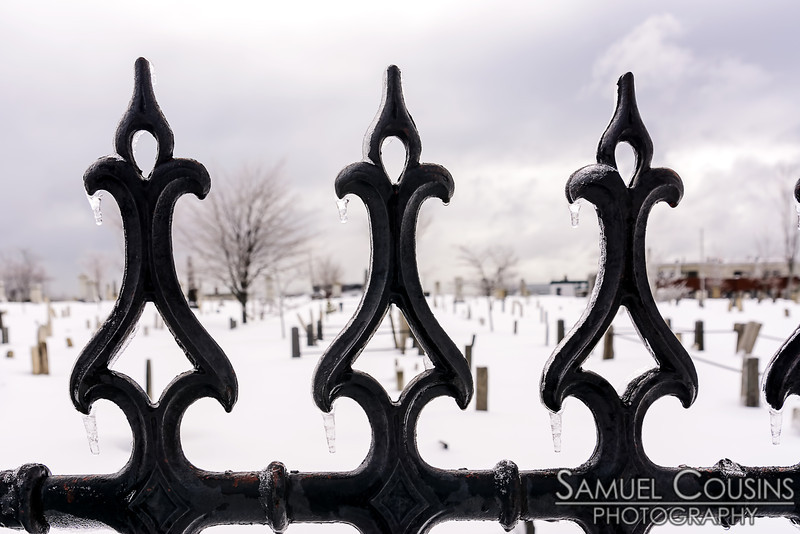 Ice on the fence at the Eastern Cemetery