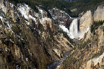 4.24.2016 / Yellowstone National Park