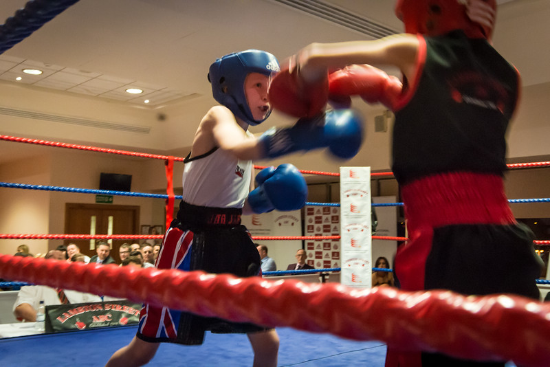 -Boxing Event March 5 2016Boxing Event March 5 2016-11420142.jpg