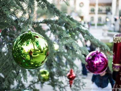 Verrado 13th Annual Christmas Tree