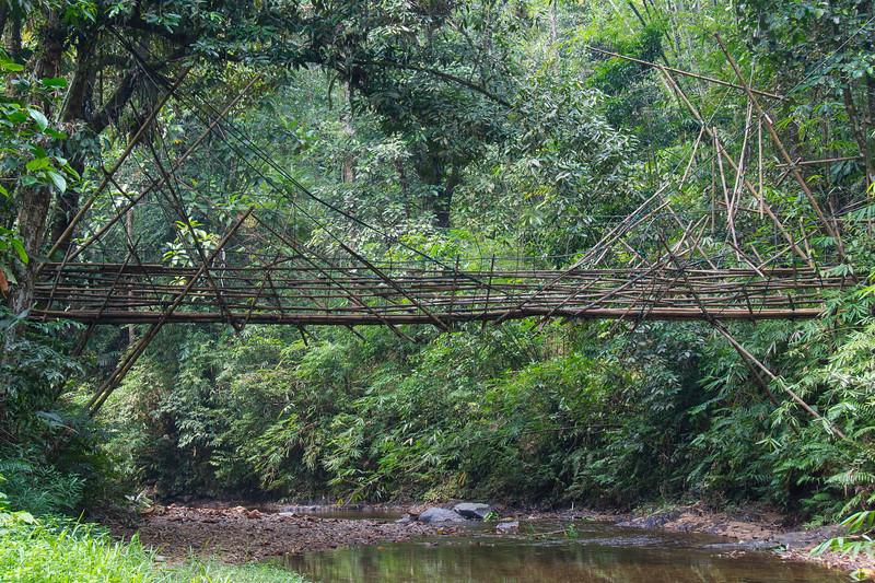 Borneo-2014-41.jpg