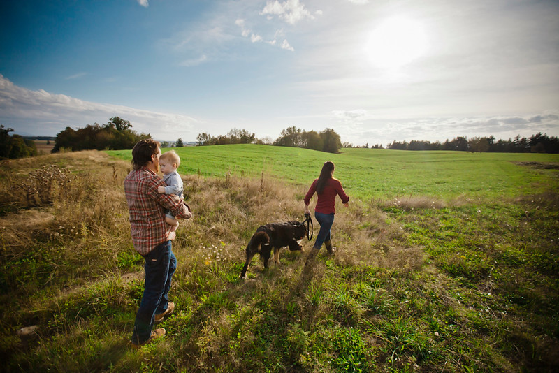 A young couple walk through a grass farm field with their baby and Bernese dog.