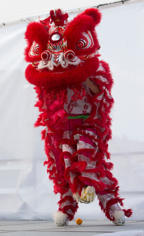 . Members of Leung\'s White Crane perform a lion dance .