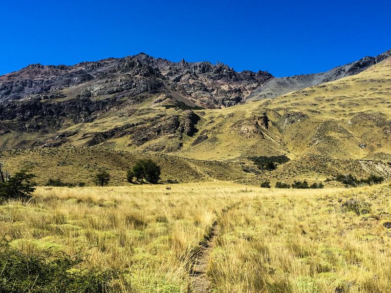 Patagonia18iphone-6022.jpg