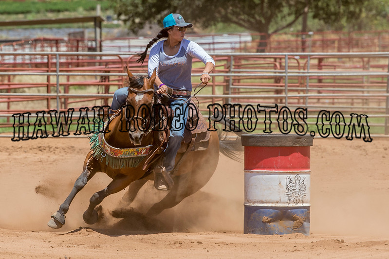 AMATEUR HORSE BARRELS