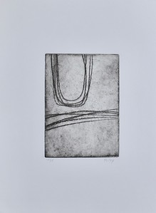 """Curved Lines #2 by Riley, (10/35) etching on 15""""x11"""" paper"""