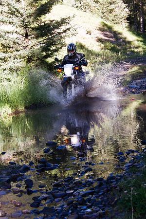 Moose Creek 2012