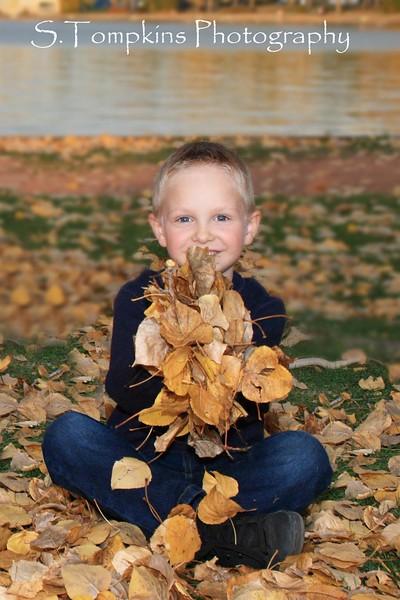 Deven Leaves.jpg