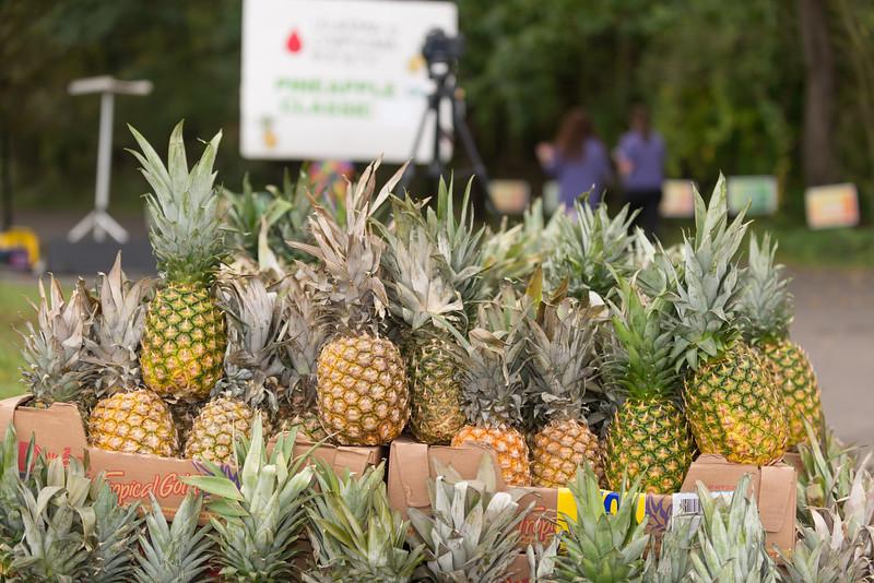 Pineapple5k17-GW-1599.jpg