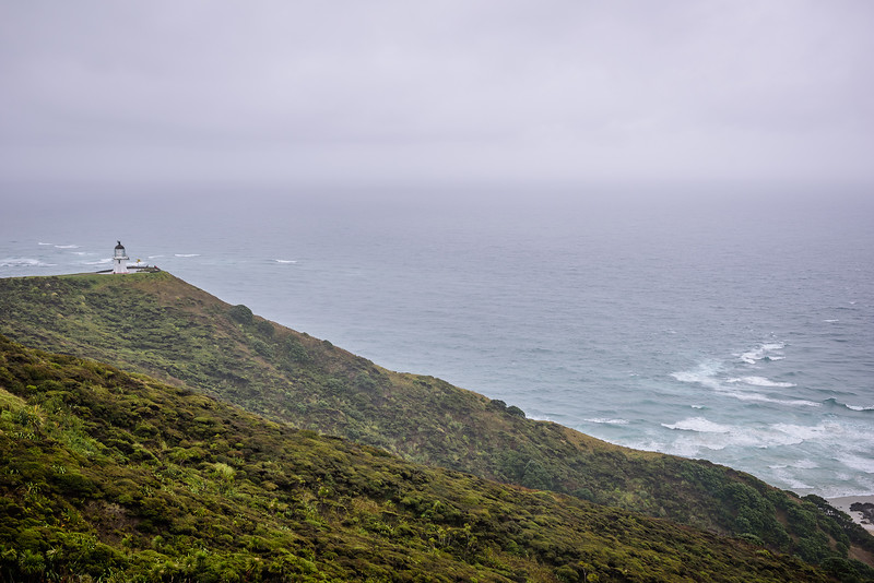 2018 KTM New Zealand Adventure Rallye - Northland (289).jpg