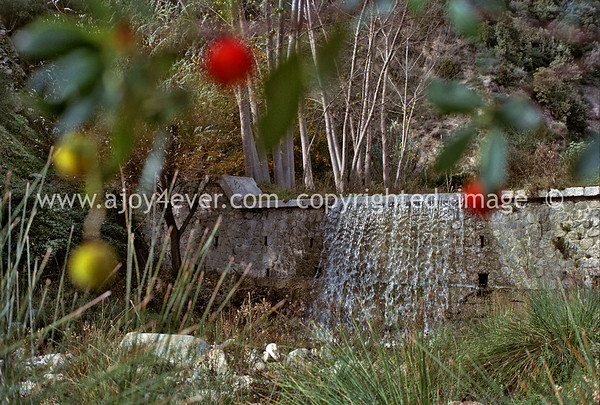 "006_""ajoy4ever"" MY FAVORITES       ""archival""1979 guardavalle paese compana waterfall"