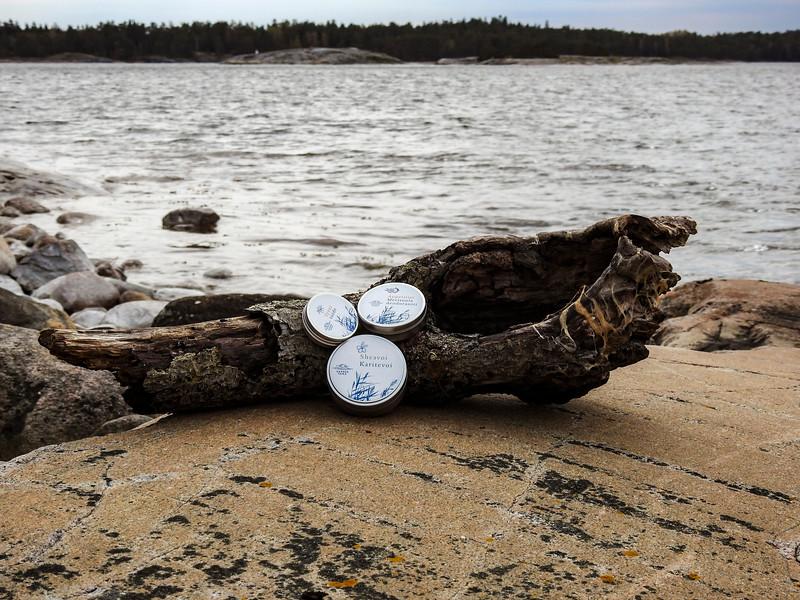Saaren Taika tyrnivoide sheavoi-0572.jpg