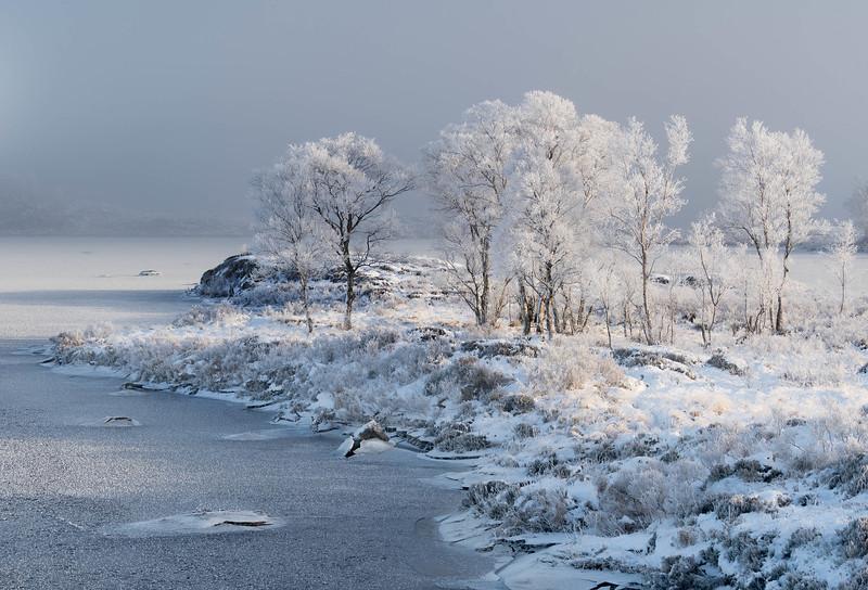 Scotland - Winter