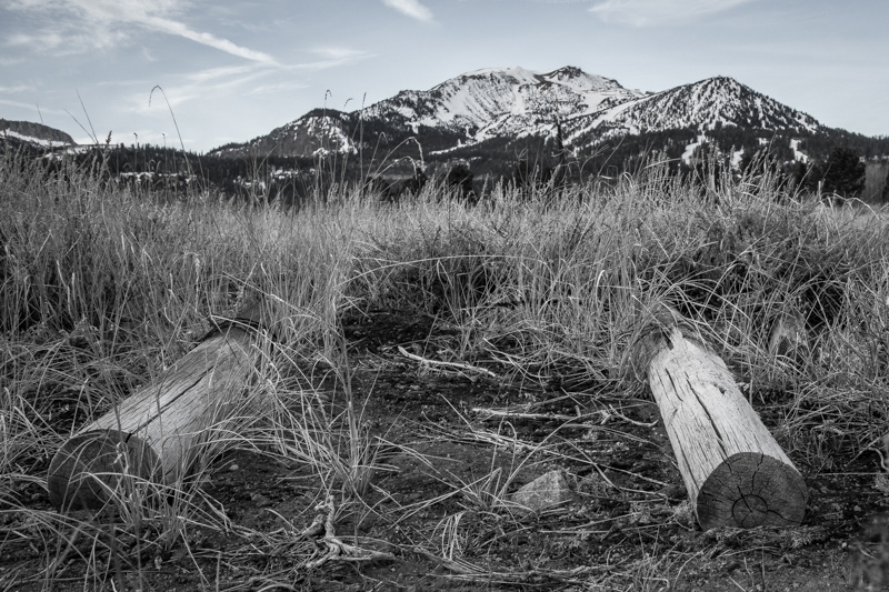December 28 - Two logs, a field and a mountain, Mammoth Lakes, CA.jpg